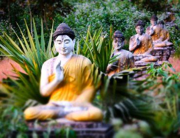 lot-buddhas-statues-in-loumani-buddha-garden-hpa-a-BMTR9H3.jpg